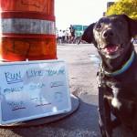 Running Injuries: Staying Sane While You Heal